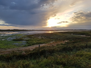 Salt Marsh Sunset